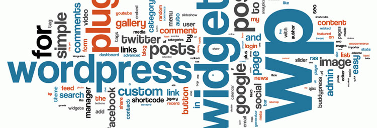 bug wordpress – certains metapost ou custom fields n'apparaissent pas en mode «aperçu»